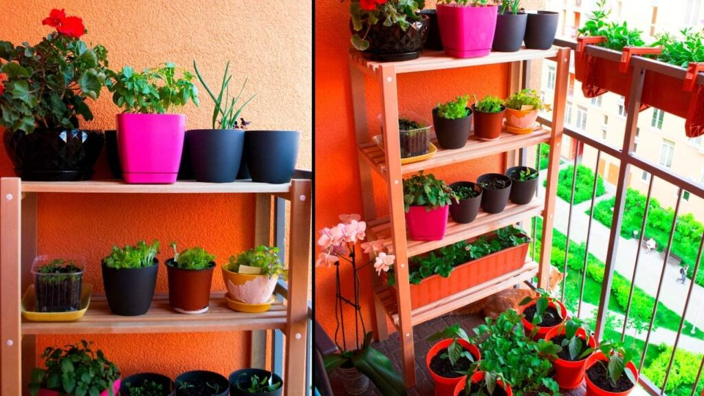 20 Best Small Balcony Vegetables Ideas, Balcony Gardening Ideas